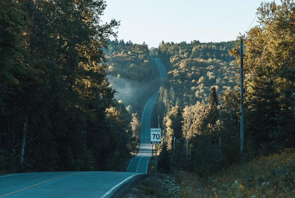 Twisty road cut through forest