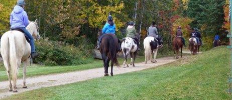 public trail riding, riding stables, wilderness riding, horses, western, english, ottawa, toronto, renfrew, petawawa, huntsville, barrie, kingston, belleville, peterborough, maynooth, bancroft, barrys bay, western, english