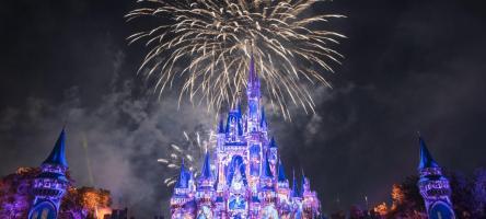 Magic Kingdom Fireworks at Walt Disney World