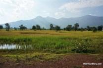 Scenic view of Champassak