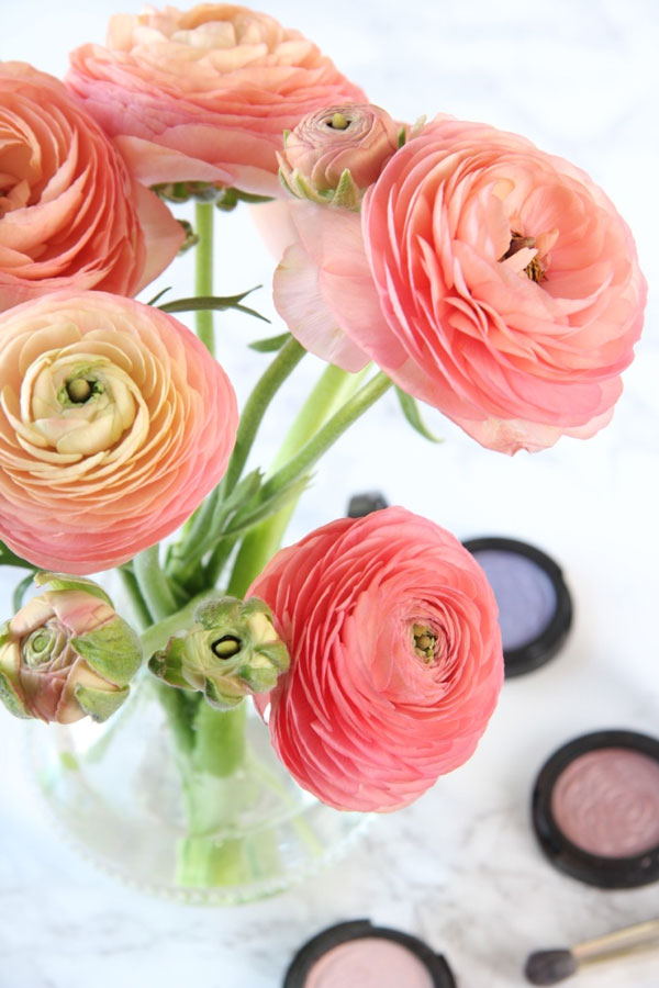 Ranunculus and Eye Shadows | Ridgely's Radar