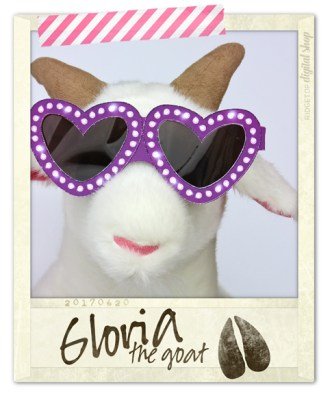 Ridgetop Digital Shop | Friday Freebie | Valentine Glasses | Gloria the Goat