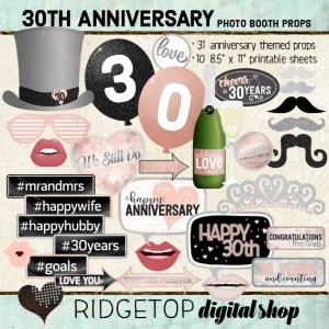 Ridgetop Digital Shop | 30th Anniversary Photo Props | Anniversary Photo Booth | Rose Gold