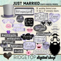 Ridgetop Digital Shop | Just Married - Victorian Lilac Photo Props | Wedding Photo Booth