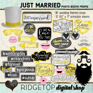Ridgetop Digital Shop | Just Married - Yellow Photo Props | Wedding Photo Booth | Yellow and Gray