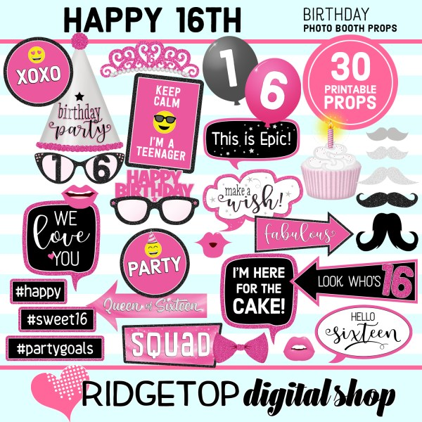 Ridgetop Digital Shop 16th Birthday Printable Hot Pink Photo Booth Props