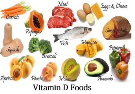 Image result for food rich in vitamin d