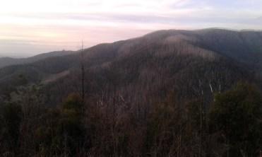 Above Marysville