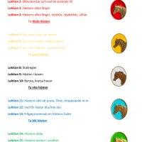 Hästis-teori i färgblock!
