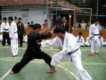 Sejarah PSTD Indonesia