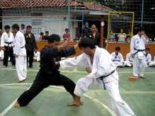 pstd-kateda-indonesia-07