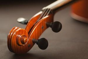 E.Y. バイオリン講師さん