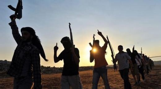 الإعلان عن مقتل 25 جهاديا ألمانيا في سوريا