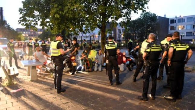 هولندا تعتقل مدونين بعد أعمال شغب تسبب فيها شبان مغاربة