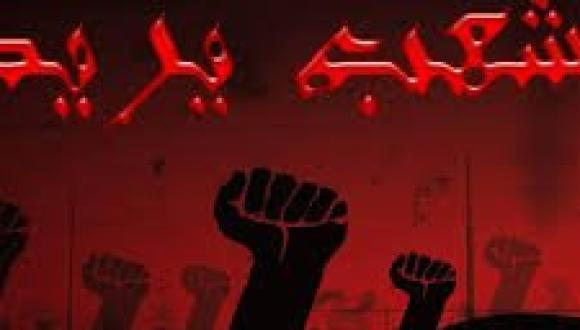 """ذ. يوسف هشام من برلين يكتب: """"الشعب يريد إسقاط الشعب"""""""