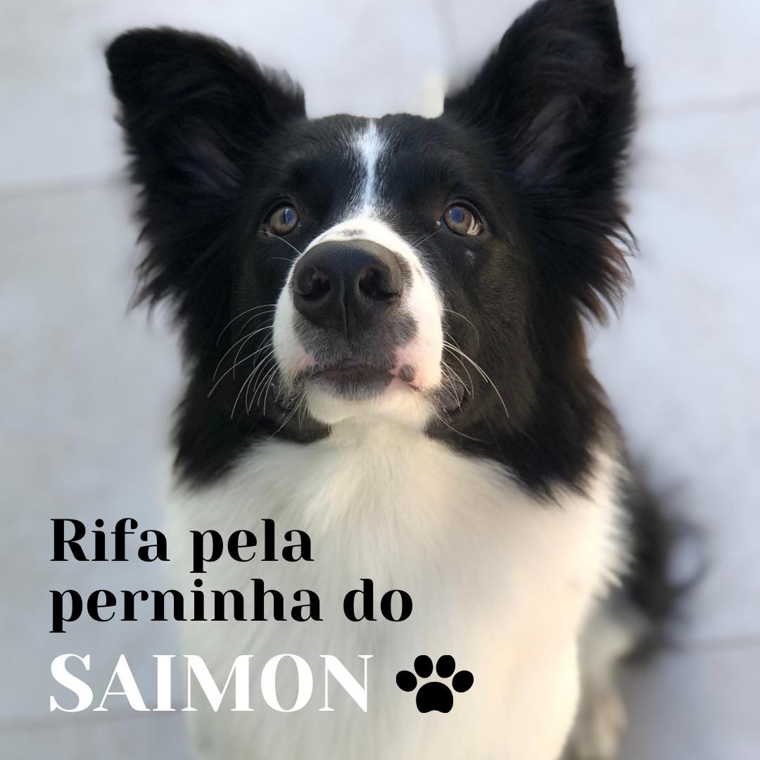 Foto  - Rifa pela perninha do Saimon