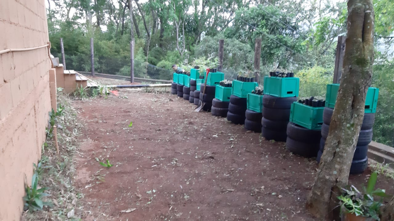 Foto  - [FINALIZADA] Plantando + Verde na Escola de Sustentabilidade