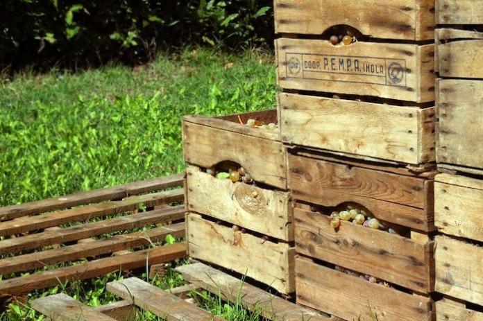 simboli riciclo legno