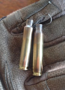 Fire-formed 223 Ackley Improved case (left) and fired 223 Remington case (right).  The improved case (left) doesn't have a tapered body and has its shoulder moved forward at a sharper, 40 degree (versus 20 degree) angle.