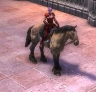 RIFT Bay Horse Bridle (Escalating)