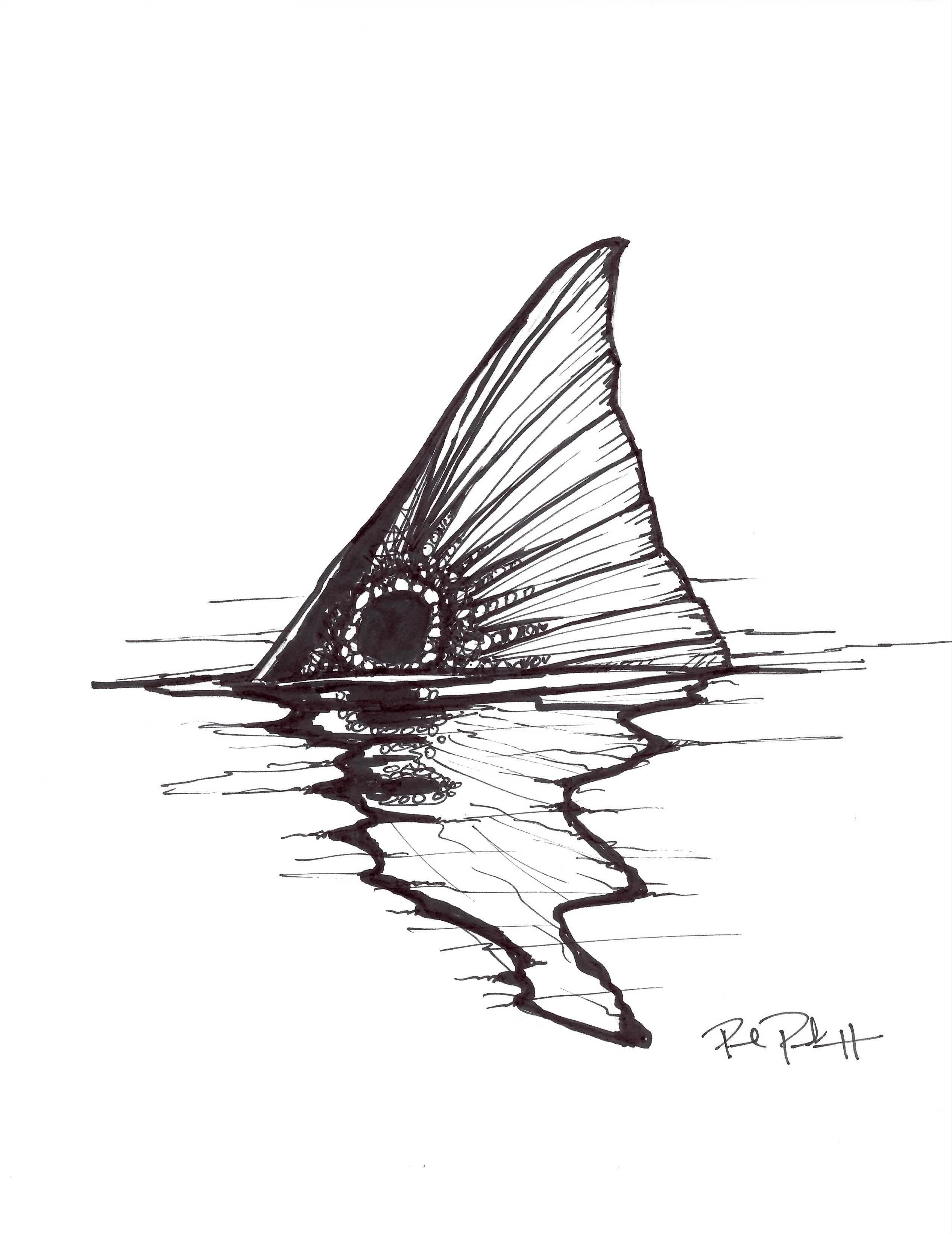 Sketchy Tail