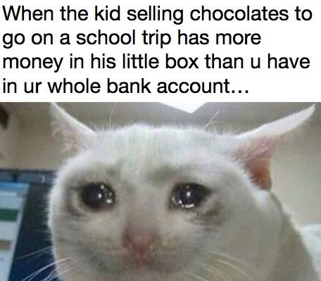 When the kid selling chocolates to go on a school trip has more money in their little box than you have in your bank account...(and then a picture of a cat crying)