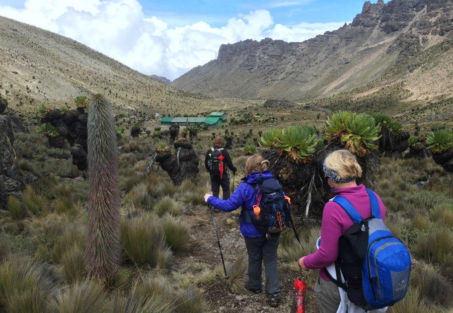mount kenya hiking tours safari