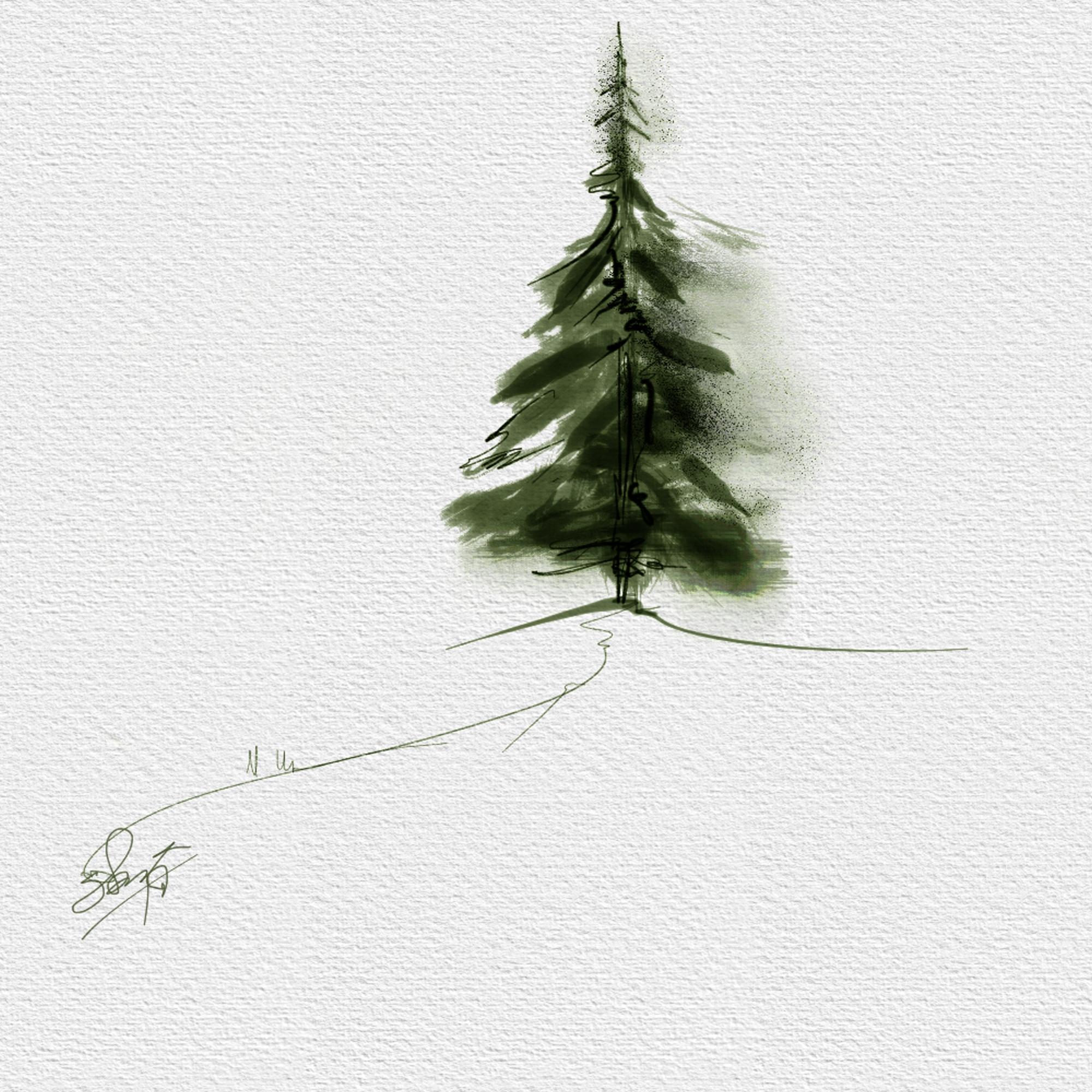 Simple Conifer Skip Allen Paints