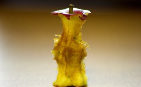 Apple core, December 2005 by Martin Cathrae