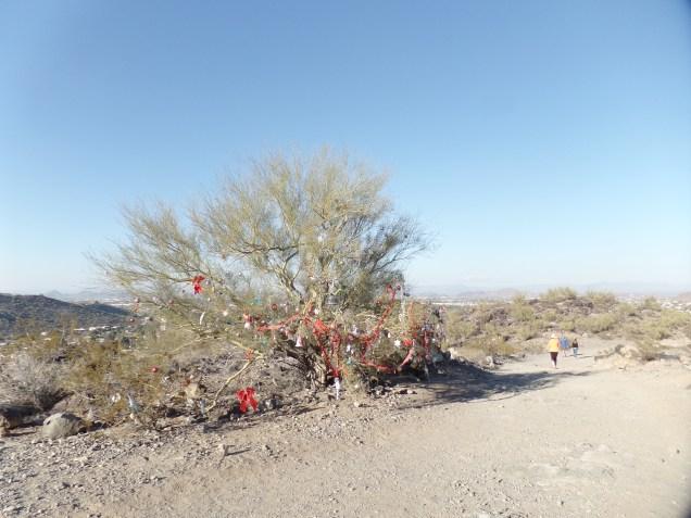 Yuletide greetings, Shaw Butte, Phoenix