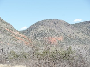 Mogollon Rim, southeast of Bell Trail