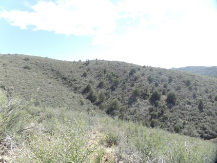 View from road leading to Badger Peak summit