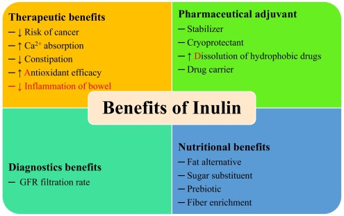 What is insulin and insulin resistance? 5