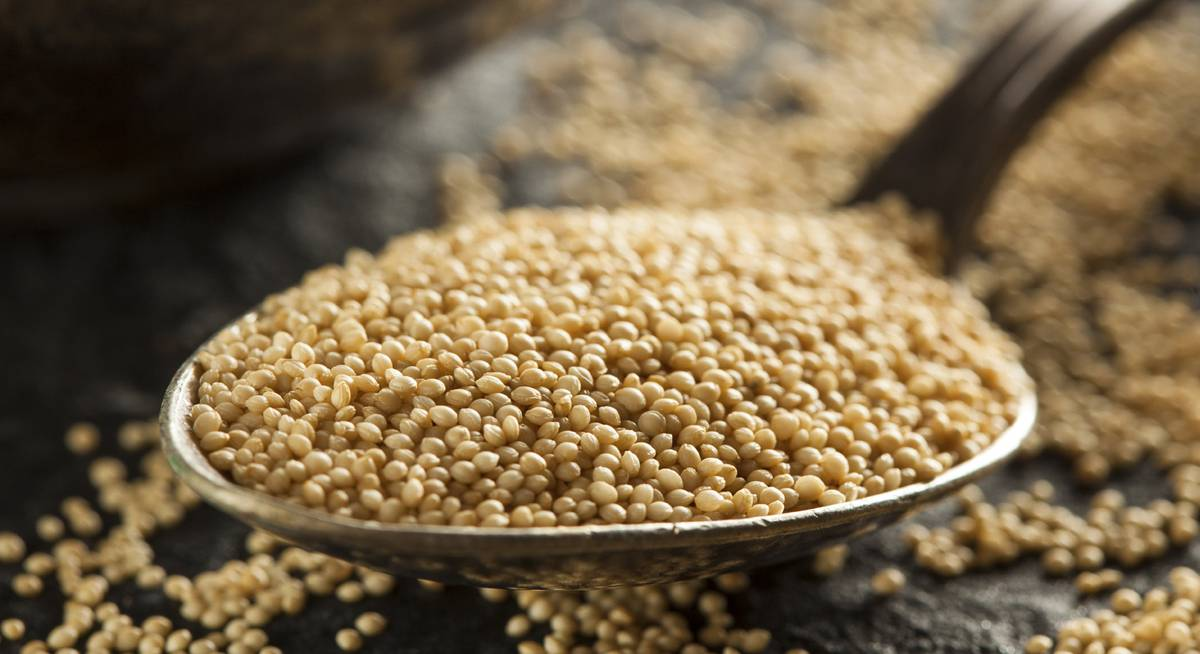 Spread from amaranth is rich in vitamins
