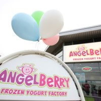 AngelBerry Frozen Yoghurt Factory - Healthy Treats for Wallace and Gromit's Grand Appeal