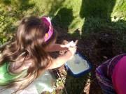 potion making
