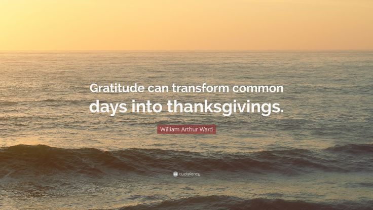 4855296-William-Arthur-Ward-Quote-Gratitude-can-transform-common-days-into