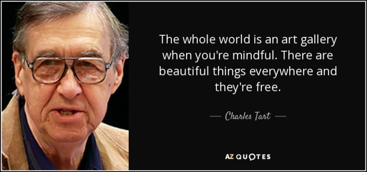 quote-the-whole-world-is-an-art-gallery-when-you-re-mindful-there-are-beautiful-things-everywhere-charles-tart-61-19-04