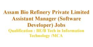 Software Developer Assistant Manager Jobs