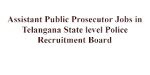 151 Assistant Public Prosecutor Jobs for LLB Candidates