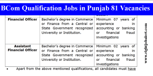 BCom Qualification Jobs in Punjab 81 Vacancies