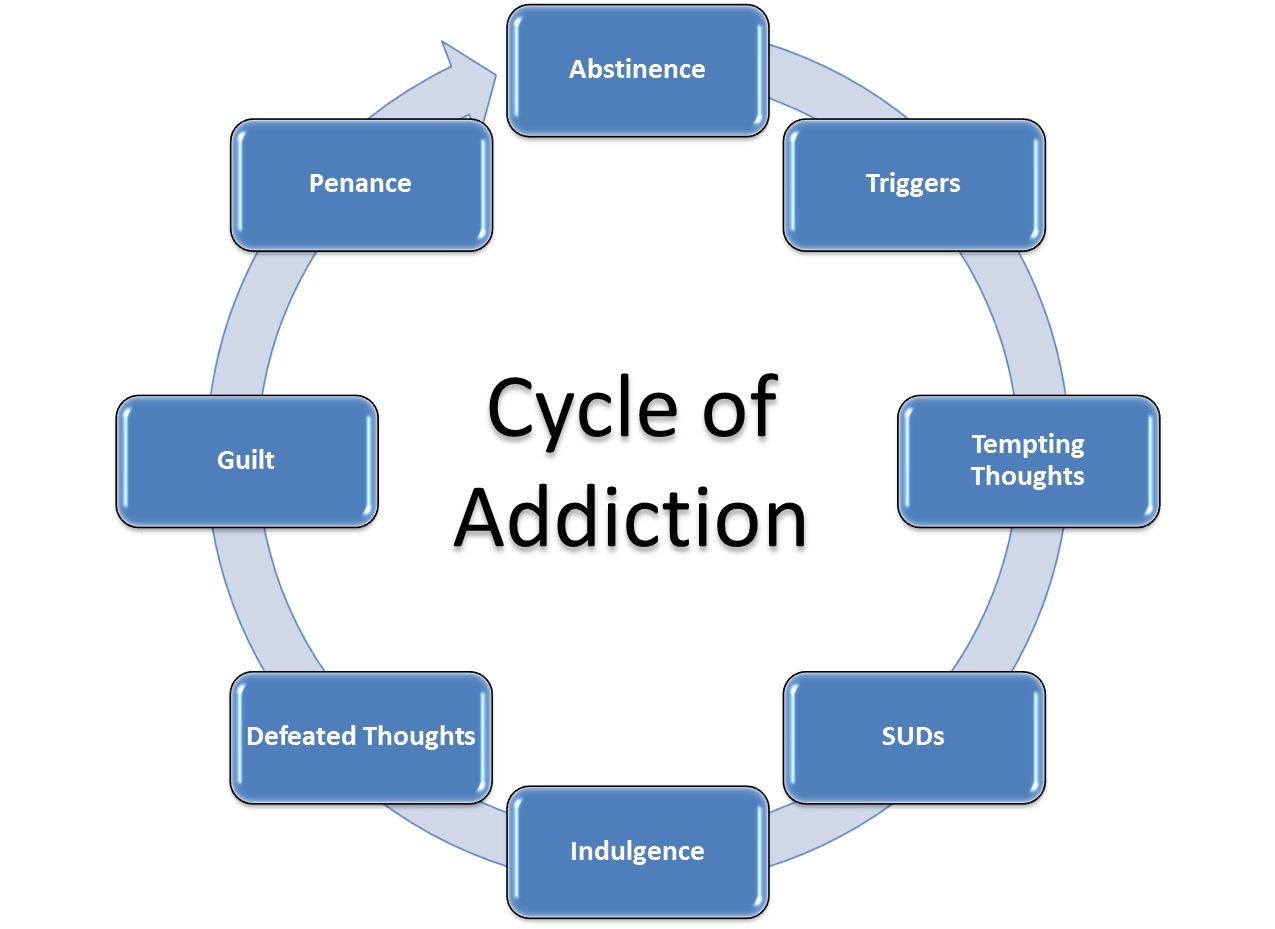 The Addiction Cycle