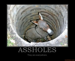 donkey-ass-hole-demotivational-poster-1220075234