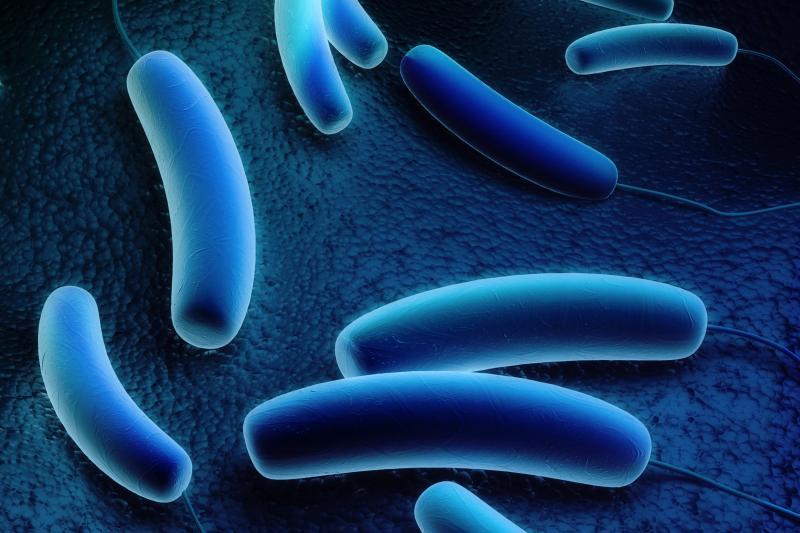 Legionella Pneumophila | Right Michigan