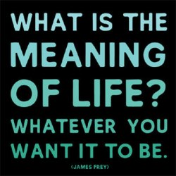 MD167The-Meaning-Of-Life-James-Frey-Posters