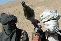 Hamas and al qaida