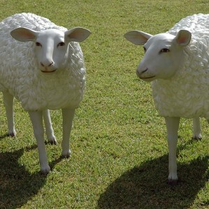 Sheep-Sculpture-Photo-By-Wouter-Hagens-300x300