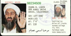 illegal-drivers-license