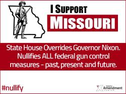 2nd-amendment-vote-missouri-override-house