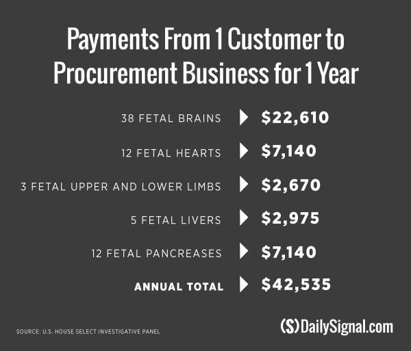 Payments from 1 Customer to Procurement Business for 1 Year
